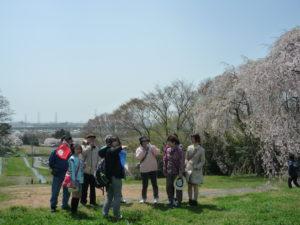 City Walking Tour to Study the Tagajo and Jogan Earthquakes and Tsunamis