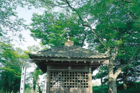 多賀城碑(壷の碑)