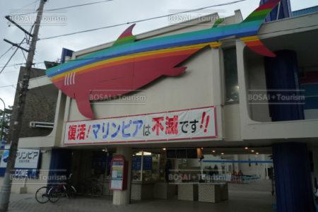 松島水族館 津波後 館外