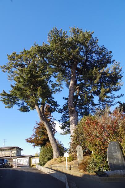 Suenomatsuyama