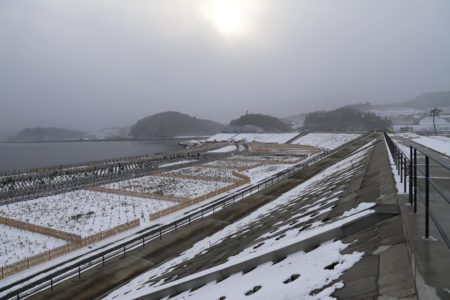高田松原防潮堤